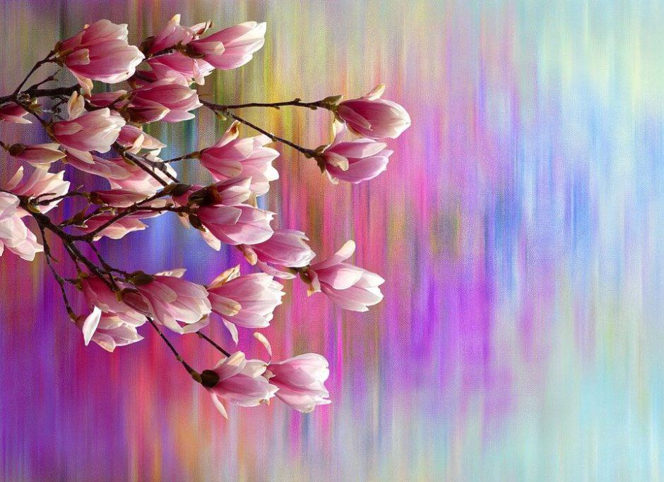 Benvenuta Primavera! Rendi più bello il tuo giardino grazie al Bonus verde.