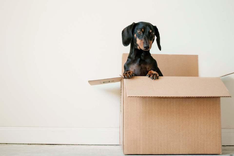 5 step da seguire prima di comprare una nuova casa