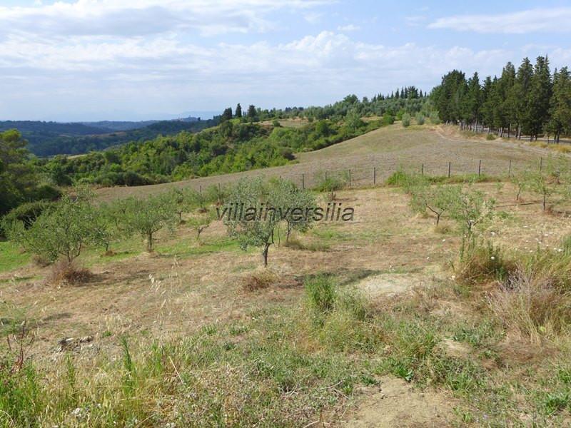 Foto 7/15 per rif. v 482021 Rustico Toscana