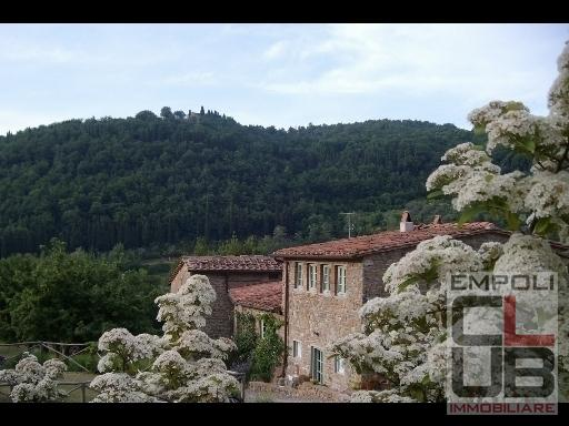 Colonica for sale in Greve in Chianti (FI)