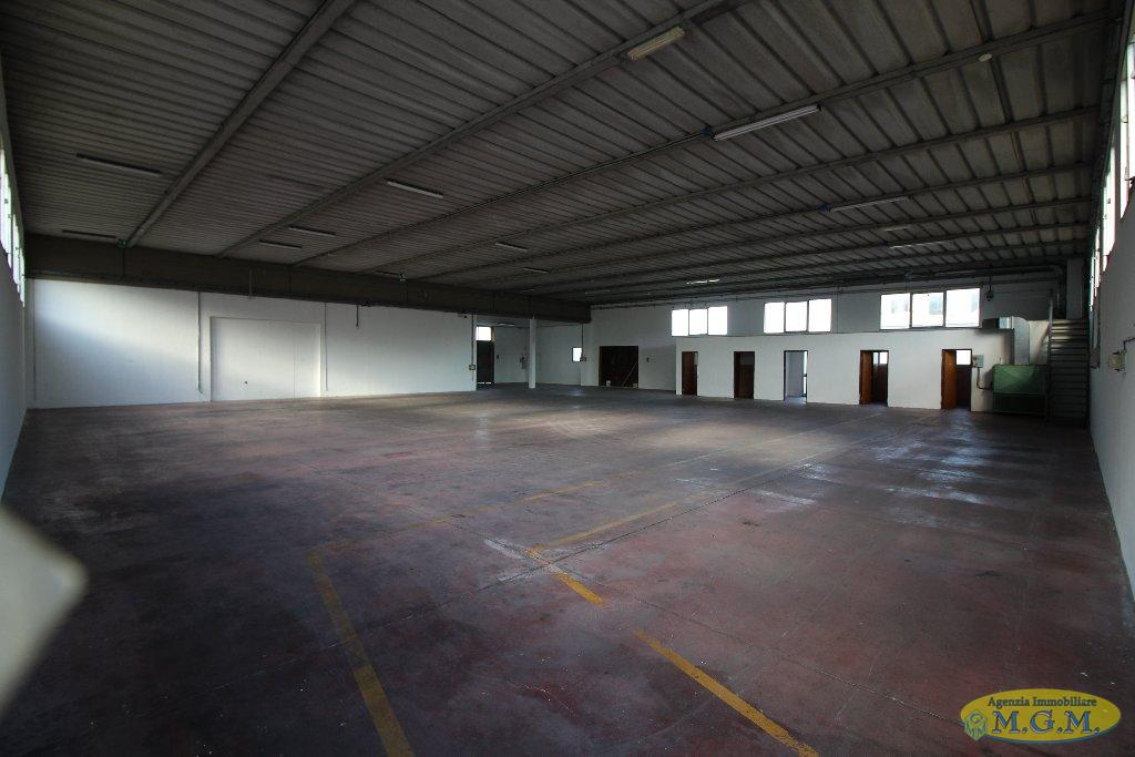 Capannone industriale in locazione a Santa Maria a Monte (PI)