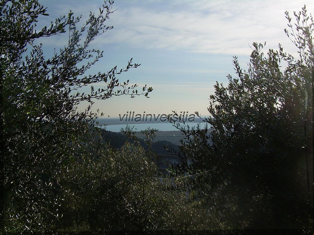 Foto 2/20 per rif. V7014  CASA IN C