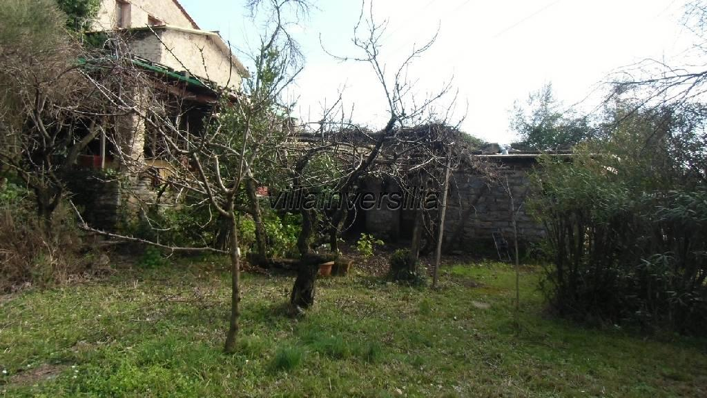 Colonica/casale a Massarosa