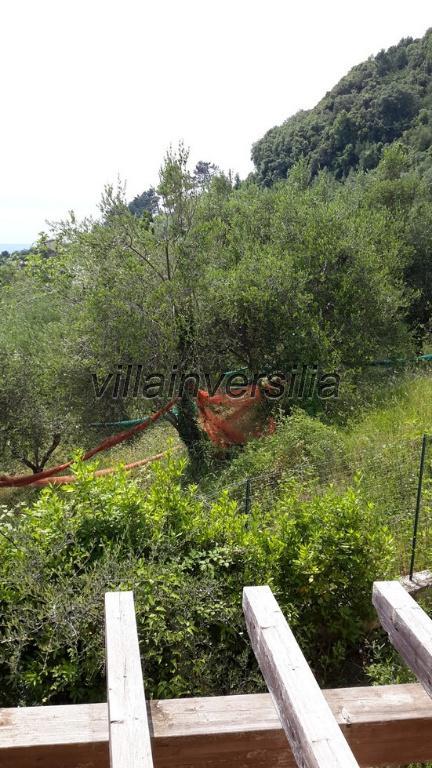 Foto 16/20 per rif. V 6015 villa col