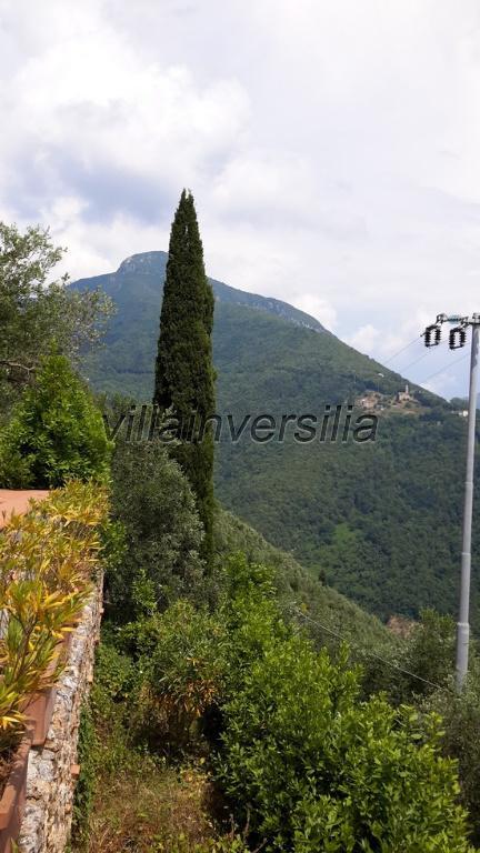 Foto 6/20 per rif. V 6015 villa col