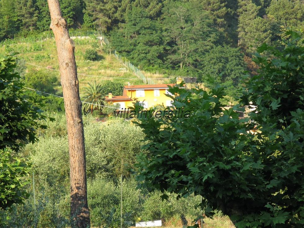 Foto 7/16 per rif. V 16809 collina