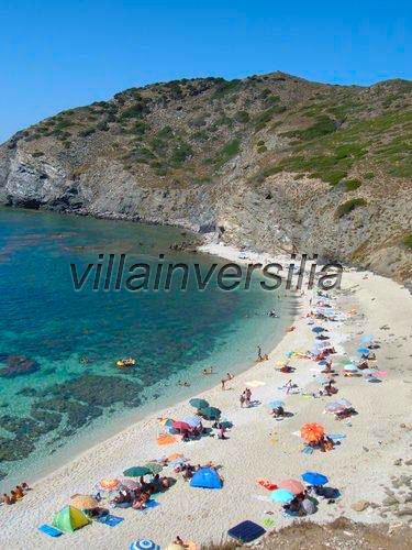 Foto 24/24 per rif. V 7715 Sardegna