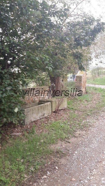 Foto 8/42 per rif. V 11016 casale Montalcino