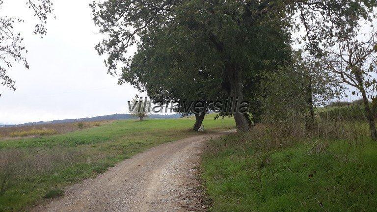 Foto 24/42 per rif. V 11016 casale Montalcino