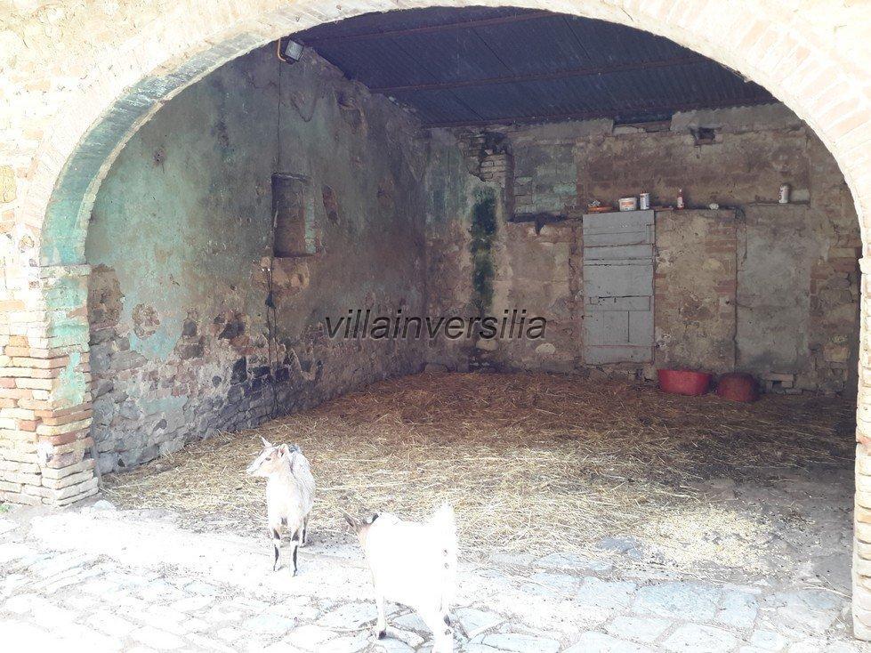 Foto 19/42 per rif. V 11016 casale Montalcino