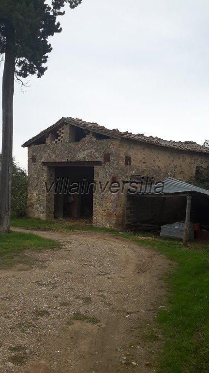 Foto 15/42 per rif. V 11016 casale Montalcino