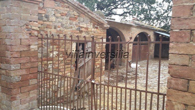 Foto 22/42 per rif. V 11016 casale Montalcino