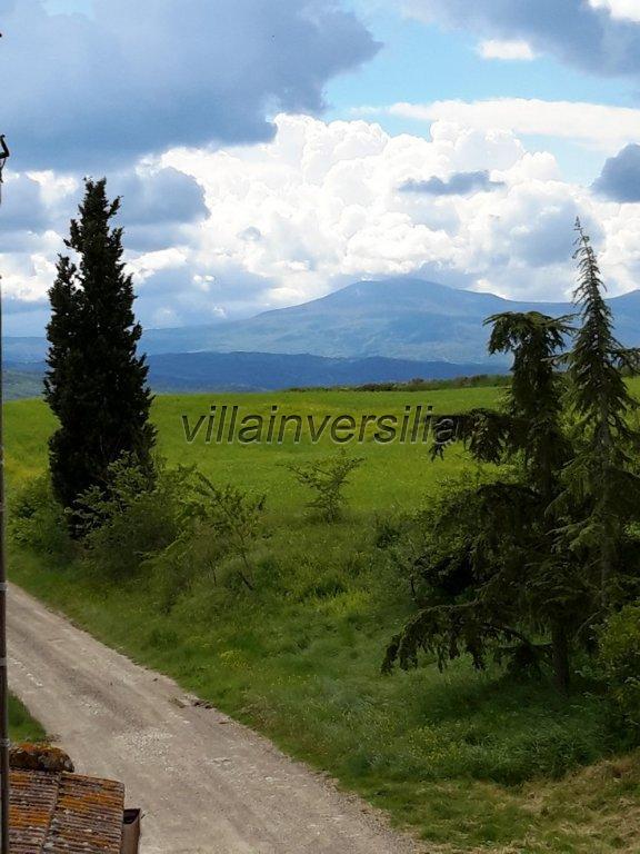 Foto 31/38 per rif. V 11116 rustico Montalcino