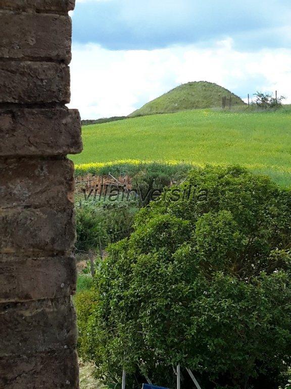 Foto 29/38 per rif. V 11116 rustico Montalcino