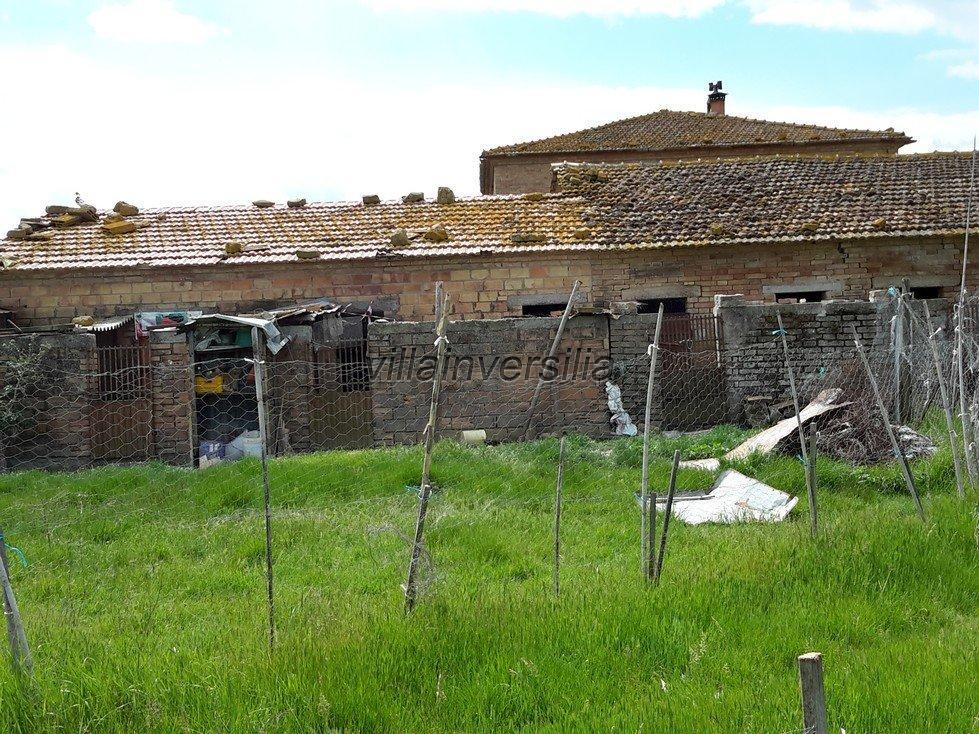 Foto 17/38 per rif. V 11116 rustico Montalcino