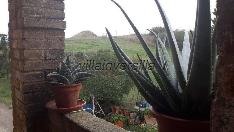 Foto 25/38 per rif. V 11116 rustico Montalcino