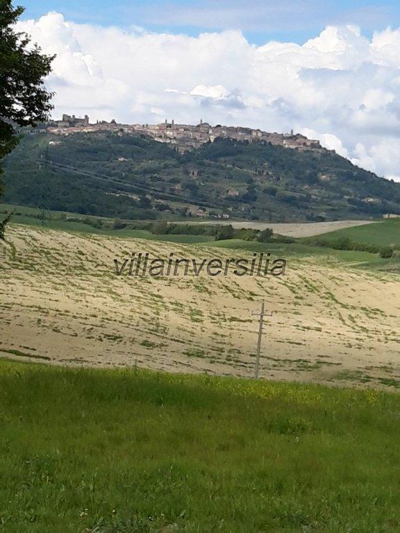 Foto 30/38 per rif. V 11116 rustico Montalcino