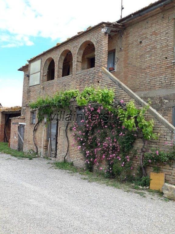 Foto 2/38 per rif. V 11116 rustico Montalcino