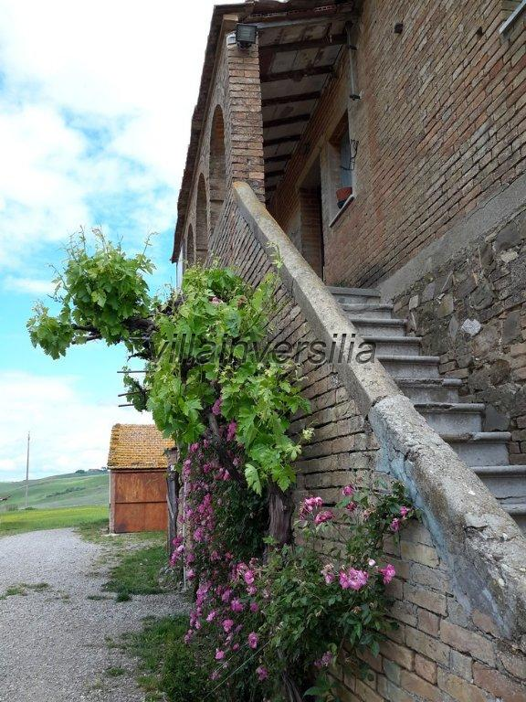 Country house in Montalcino