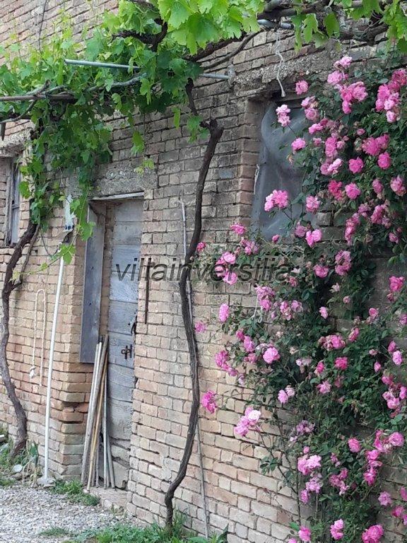 Foto 3/38 per rif. V 11116 rustico Montalcino