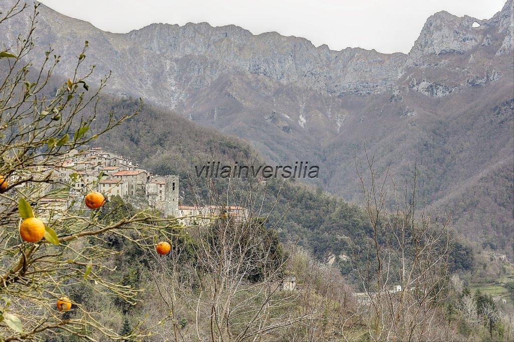 Foto 36/38 per rif. V 11216 rustico Versilia