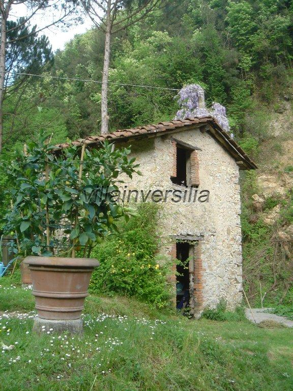 Photo 9/41 for ref. V 7409 borgo Toscano Lucca