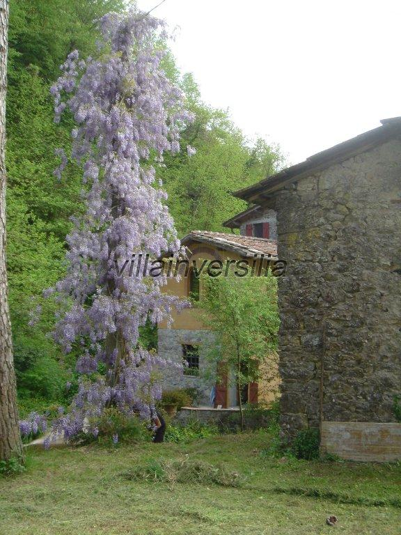 Photo 8/41 for ref. V 7409 borgo Toscano Lucca