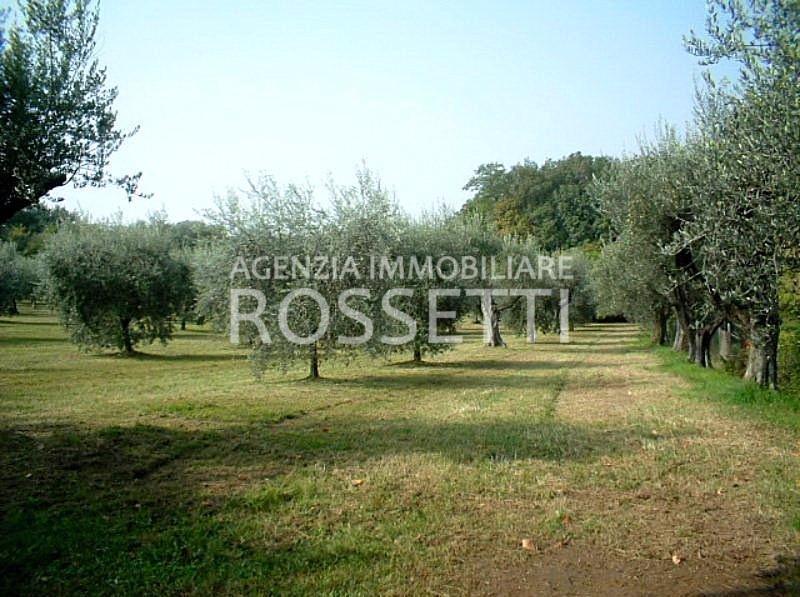 Terreno agricolo in vendita a Marcignana, Empoli (FI)