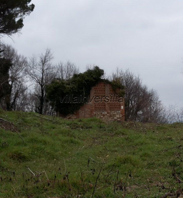 Foto 11/18 per rif. V 2117 borgo Siena