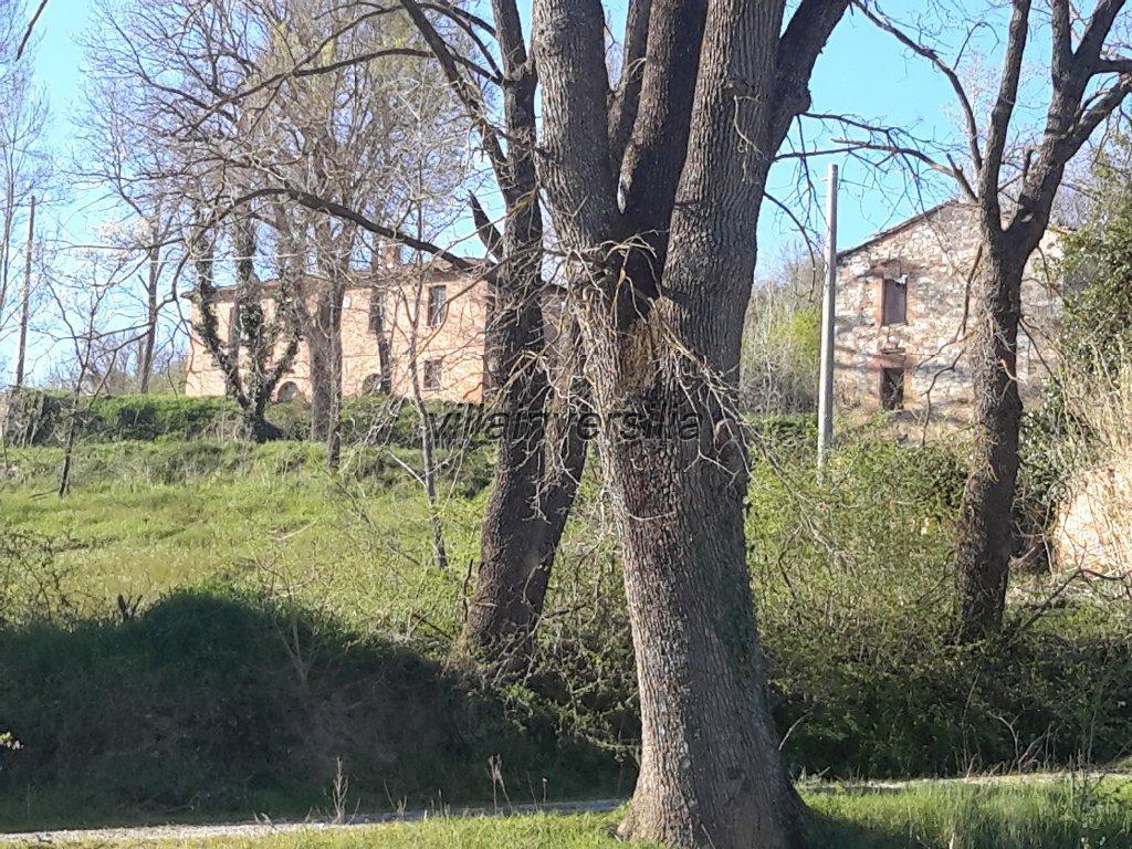 Foto 4/18 per rif. V 2117 borgo Siena