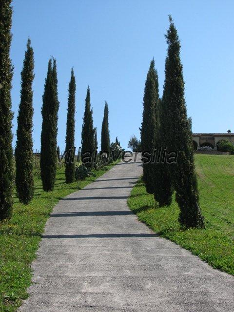 Foto 15/30 per rif. V 2317  villa Manciano