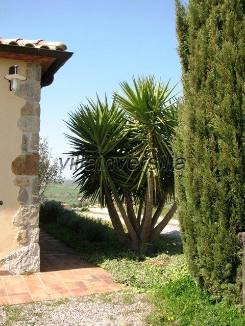 Foto 6/30 per rif. V 2317  villa Manciano