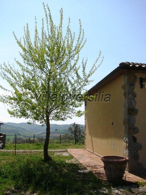 Foto 7/30 per rif. V 2317  villa Manciano