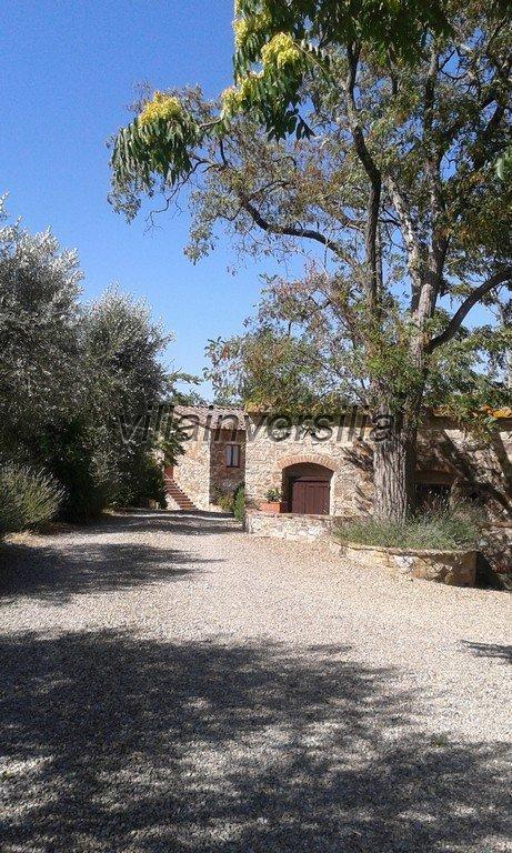 Foto 12/16 per rif. V 3517 vinicola Chianti