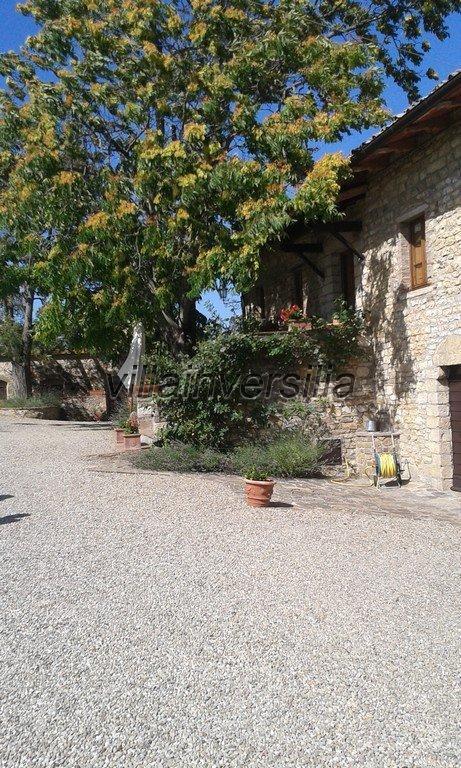 Foto 11/16 per rif. V 3517 vinicola Chianti