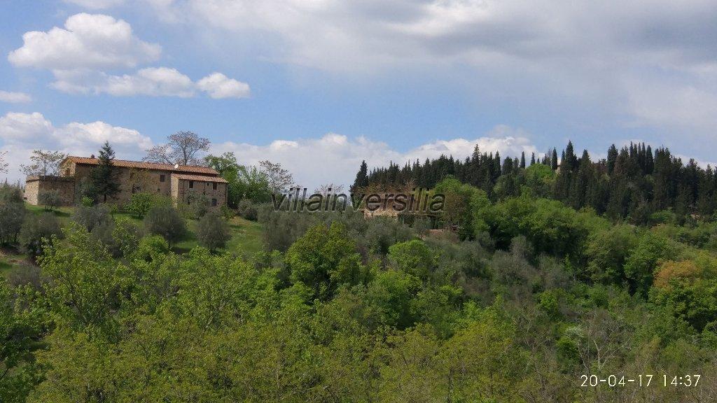 Foto 15/16 per rif. V 3517 vinicola Chianti