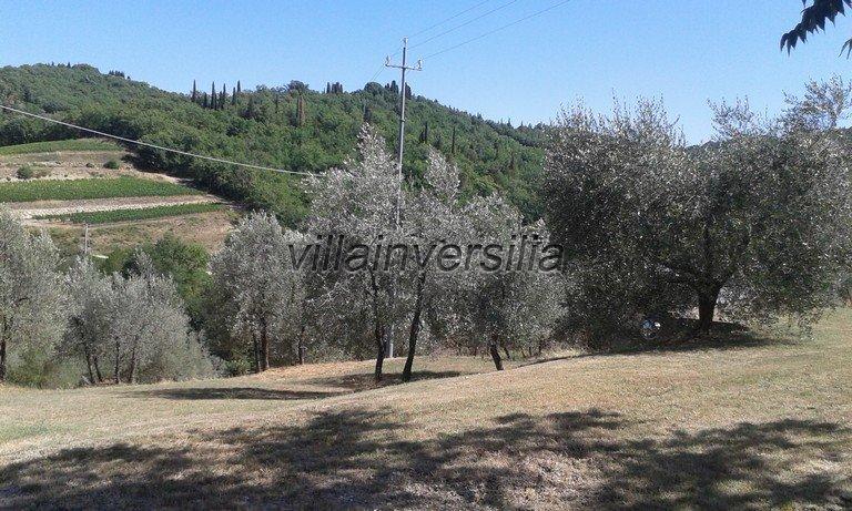 Foto 6/16 per rif. V 3517 vinicola Chianti