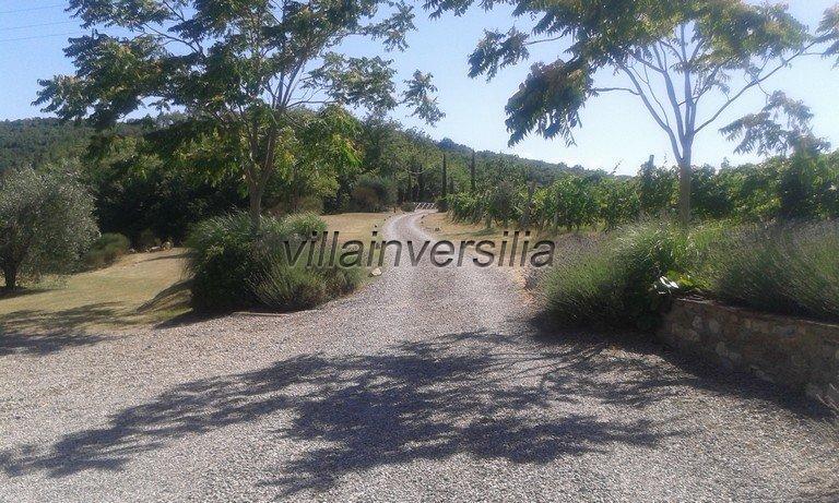 Foto 2/16 per rif. V 3517 vinicola Chianti
