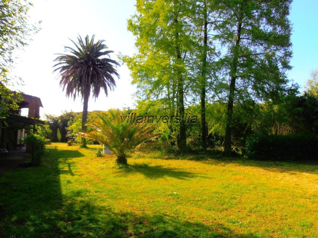 Foto 4/11 per rif. V 4217 casale Toscano