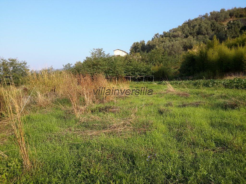 Foto 2/2 per rif. V 7317 edificabile  a Forte dei