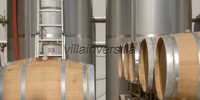 Foto 1/11 per rif. V 9617  azienda San Gimignano