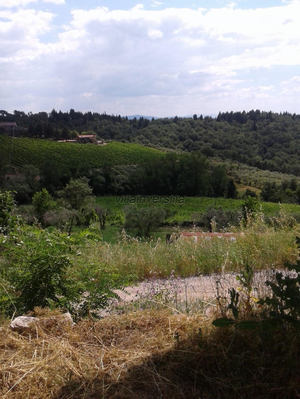 Foto 3/5 per rif. V 9717 azienda agricola Siena