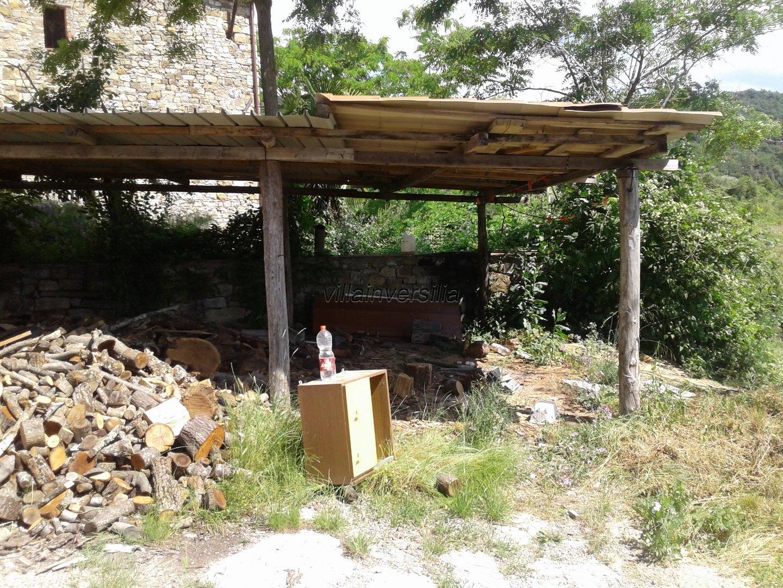 Foto 5/5 per rif. V 9717 azienda agricola Siena