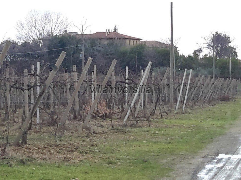 Foto 2/19 per rif. V62018 Fattoria Siena