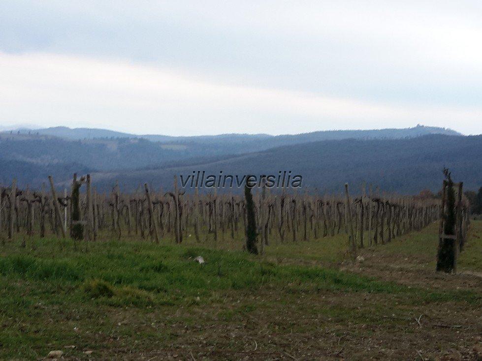 Foto 16/19 per rif. V62018 Fattoria Siena