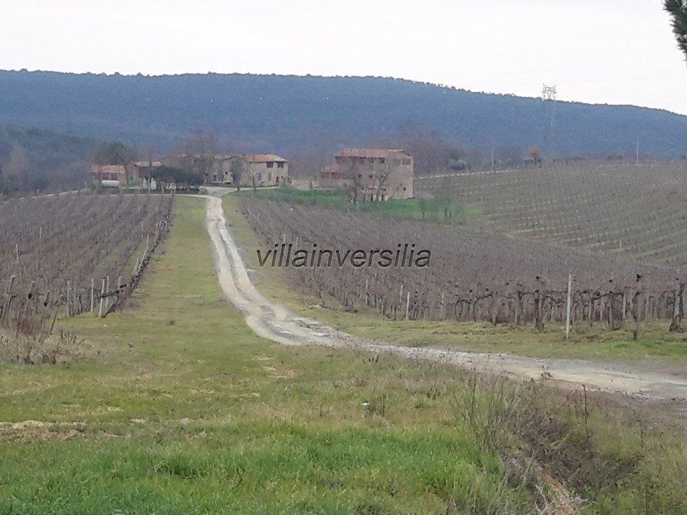 Foto 19/19 per rif. V62018 Fattoria Siena