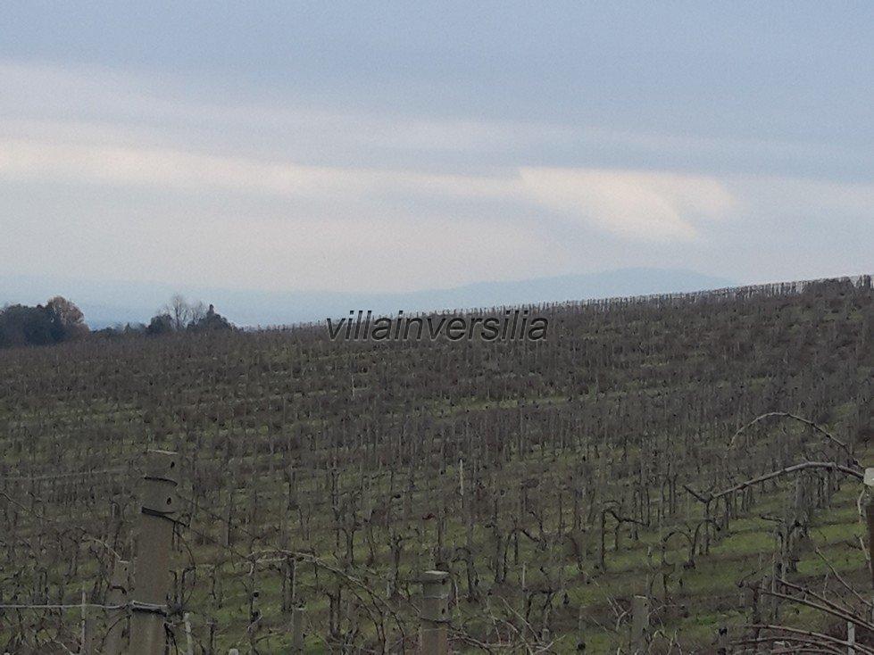 Foto 5/6 per rif. V 112018 rustico San Gimignano