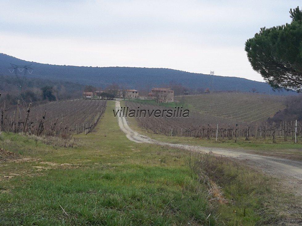 Foto 4/6 per rif. V 122018 rustico Siena
