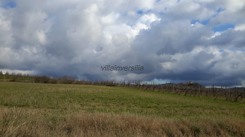 Terreno agricolo a Castelnuovo Berardenga