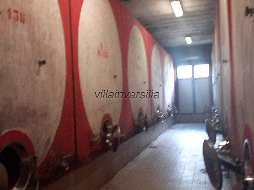 Foto 12/19 per rif. V332018 azienda Siena